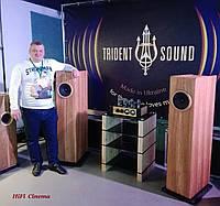 Trident Sound - успехи и достижения бренда. Подведение итогов за 2018 год