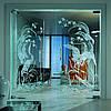 Стеклянные двери маятниковые Glass Construct Харьков, фото 3