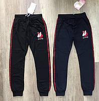 Трикотажные спортивные брюки для девочек S&D 134-164 p.p.