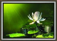"""Прекрасная  картина """"Белый лотос"""" кристаллами Сваровски ручной работы"""