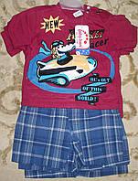 Костюм футболка+шорты клетка для мальчика бордо 9-18 месяцев