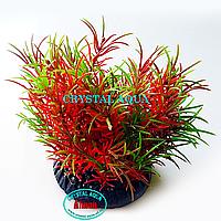 Растение Атман Q-158A, 7.5см