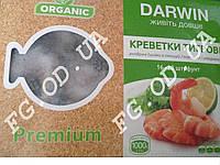 Креветка 16/20 б/г DARWIN
