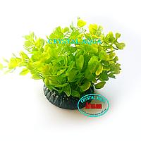 Растение Атман Q-010E, 7.5см