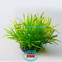 Растение Атман Q-113E, 7.5см