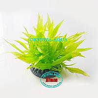 Растение Атман Q-165G, 7.5см