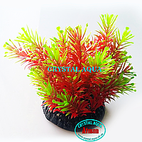 Растение Атман Q-110D1, 7.5см