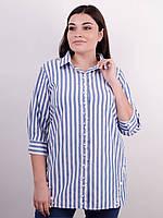 c941ff4084a Дакота. Оригинальная женская рубашка больших размеров. Синий.