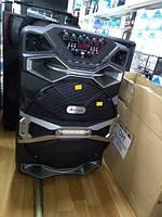 Колонка с аккумулятором UF-1618AK-DT + радиомикрофон