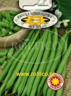 Польские семена фасоли cпаржевой Скуба 40г, фото 2