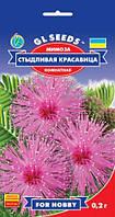 Мимоза Стыдливая Красавица комнатная оригинальное многолетнее растение, упаковка 0,2 г