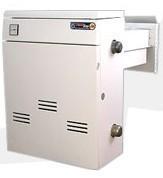 Газовый котел Термо Бар двухконтурный дымоходный КС-ГВ-18ДS