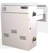 Газовый котел Термо Бар двухконтурный дымоходный КС-ГВ-18ДS, фото 2