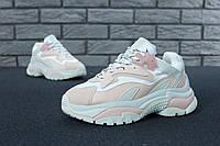 Кроссовки мужские Ash Addict Sneakers 31112 бело-розовые