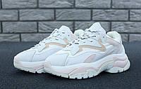 Кроссовки женские Ash Addict Sneakers 31113 бело-серые