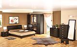 Комод 6Ш + ДзТокио (Мебель-Сервис)  1165х475х1610мм , фото 2