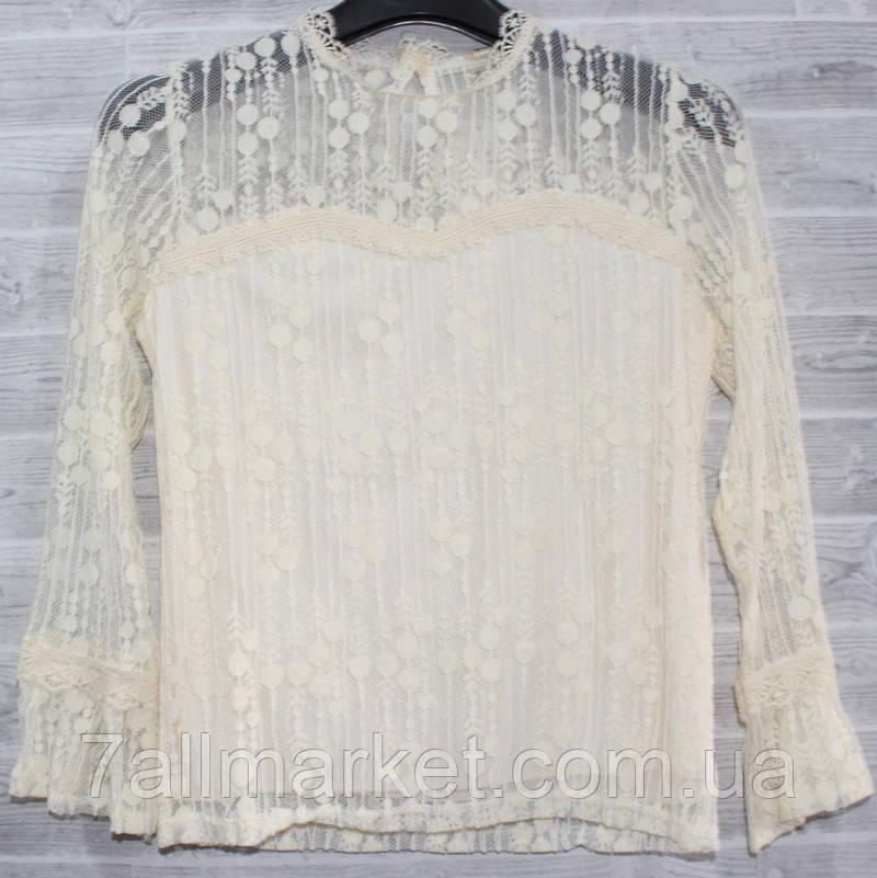 d95d9d0150f Блузка женская гипюровая оригинальная