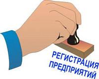 Регистрация субъекта предпринимательской деятельности - юридического или физического лица
