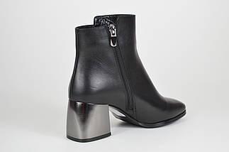 Кожаные женские ботинки с серебристым каблуком Lottini 2134, фото 2