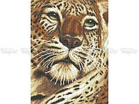 Схема вышивки бисером «Взгляд тигра» (A3)