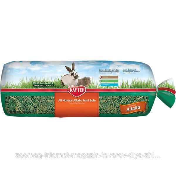 """Сено люцерны для грызунов до 1 года, беременных и кормящих """"Alfalfa Hay"""" 0.68кг, Kaytee™"""