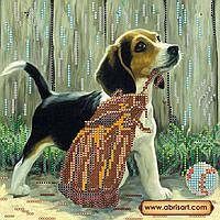 Схема для вышивки бисером на натуральном художественном холсте Игривый щенок