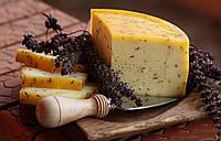 Закваска для сыра Лайден на 10 л. молока