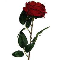 Роза раскрытая бархат на ножке, 63см