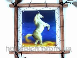 """Ловушка для снов  """"Конь на дыбах"""""""