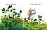 Туконі - мешканець лісу, фото 3