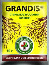 Укорінювач GRANDIS (Грандіс) 10г