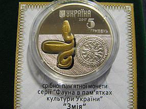 Змія Срібна монета з позолотою 5 гривень срібло 15,55 грам, фото 3