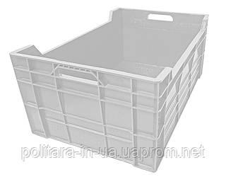 Ящик сплошной пластиковый для рыбы 600х400х260