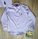Яркий нарядный костюм для подростка: голубая рубашка Polo и брюки цвета электрик, фото 3