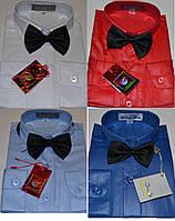 Детские однотонные рубашки с бабочкой BENDU (22 цвета) от 2 до 8 лет !!!
