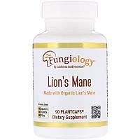 Ежовик гребенчатый, поддержание иммунитета, California Gold Nutrition, 90 растительных капсул