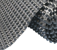 Профилированная шиповидная мембрана 500