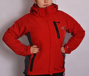 Женская демисезонная термо куртка The North Face