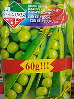 Семена гороха сахарного, овощного  среднеранний Кельведонское чудо 60 грамм,200 семян Польша