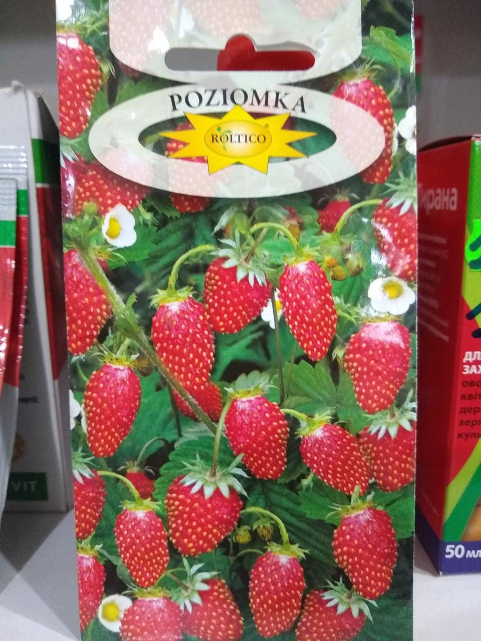 Земляника крупноплодная сорт Регина 0,2 грамма, Польша
