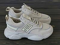 Кроссовки молодежные бежевые на шнуровке Lonza, фото 1