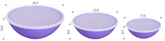 Миска пластмасова з кришкою,0,8л, Алеана