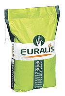 Семена кукурузы ЕС Фарадей