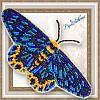 """BGP-070 Набор для вышивки бисером на прозрачной основе """"3D Бабочка Dysphania numana"""""""