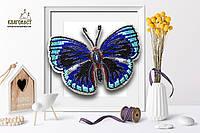 """Б-020 Набір для вишивки бісером на прозорій основі """"3-D Метелик Callithea Optima"""""""