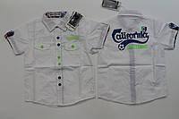 Котоновая рубашка для мальчиков 1 год