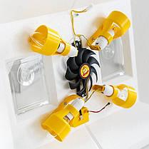 Инкубатор с механическим переворотом Инверторный Теплуша 100 яиц (ламповый), фото 2