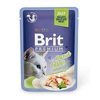 Brit Premium Cat pouch филе форели в желе
