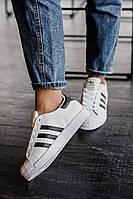 Стильные кроссовки Adidas Superstar white/black (унисекс)