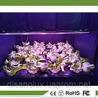 Интелектуальное фитооборудование  для выращивания растений в домашних условиях , фото 4